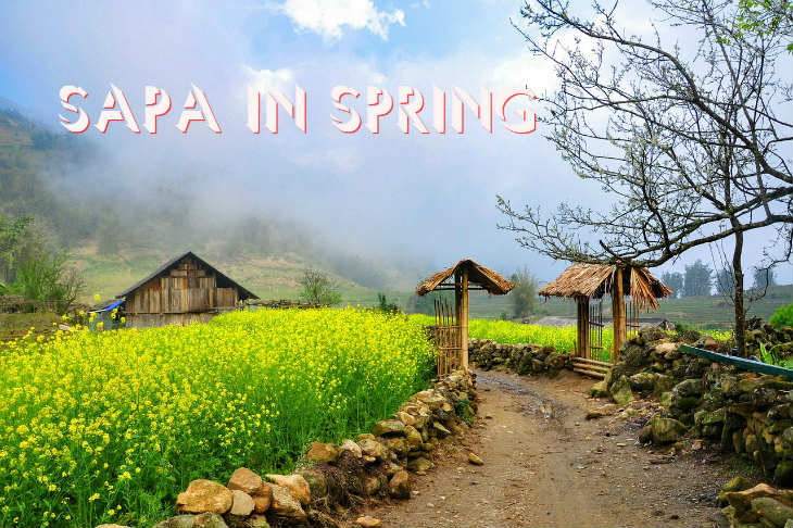 Sa Pa - The stunning beauty of the spring!